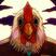 Pokélove's avatar