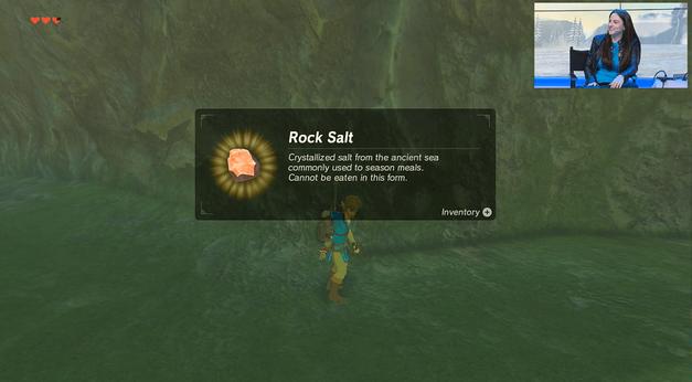 The Legend of Zelda Breath of the Wild Rock Salt Timeline