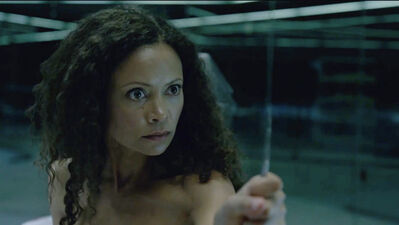NYCC: 'Westworld's Thandie Newton Wanted to Retire