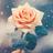 Winterfirstsnow*'s avatar
