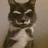 Oscar1444's avatar