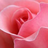 PrincessHopeOfNewOrleans's avatar