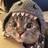 Zoe01331's avatar