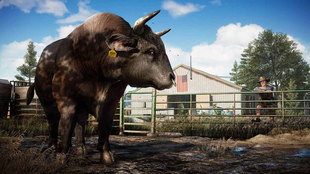 Far Cry 5 animals bull cow