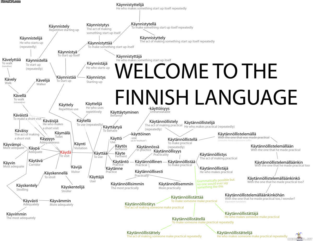 Finnish The Official Int How To Learn A Foreign Language Guide