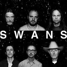SwansBand2