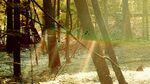 Childish-gambino-camp-official-tracklist
