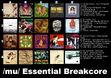 Essentialbreakcore