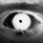 Thebatotot's avatar
