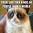 Catman725's avatar