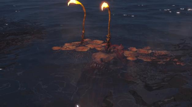 FarHarborFish