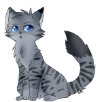 Skycloud Of Thunderclan