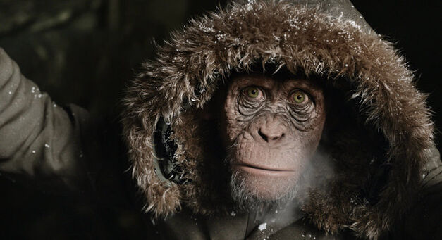 War For the Planet of the Apes_Bad Ape