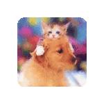 AtinaeAlehthrra's avatar