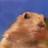 Minecraftwillywonkatrash's avatar