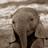 Hairr's avatar
