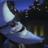 Falcon Takanashi's avatar
