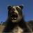 DJArctodus's avatar