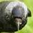 John Breasly's avatar