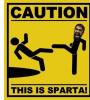 SPARTAN-984