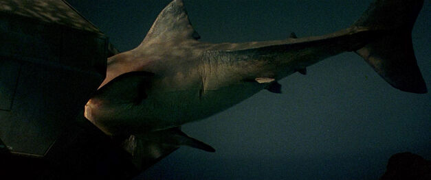 jaws-3d-miniature-shark