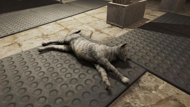Fallout-4-Cat
