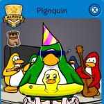 Pignquin