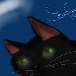 Stormflight123