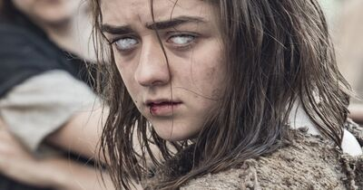 Arya's Most Badass 'Game of Thrones' Moments