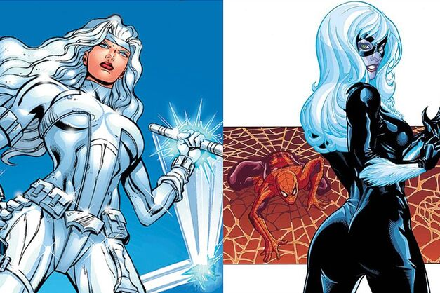 black cat & silver sable