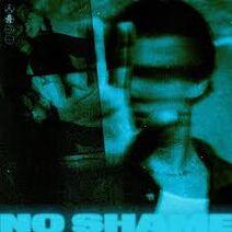 No shame 5sos