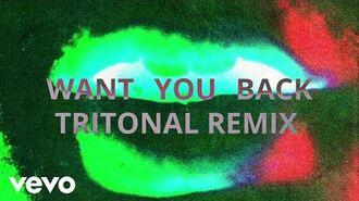 5 Seconds of Summer - Want You Back (Tritonal Remix Video)