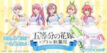 Gotoubun no Hanayome x Atre Akihabara White Day Fair