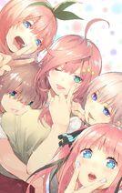 5toubun quintuplets color art one-shot - manga release