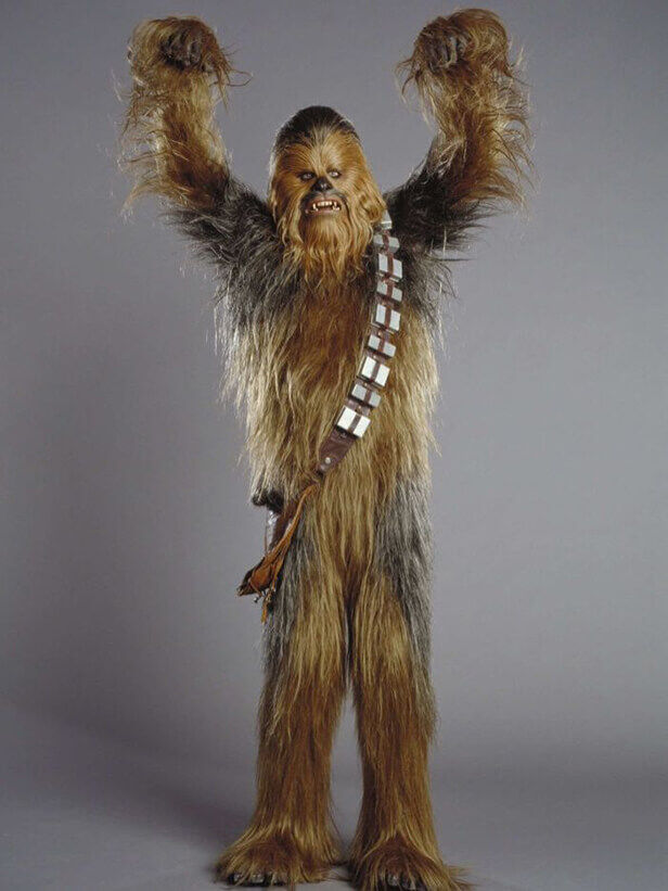 Chewbacca, from Star Wars