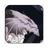 MoonshadowCA's avatar