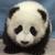 Pandaman3000