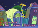 The Story of the Dawn Chorus