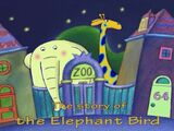 The Story of the Elephant Bird