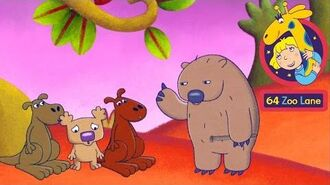 64 Zoo Lane - The Story of the Jimjameree Tree - NEW EPISODE Cartoon for kids