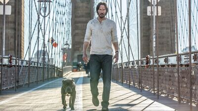 Exclusive: First Look At New John Wick 2 Poster