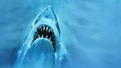 Franchise Formula: 'Jaws'
