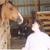 Horselover42589