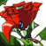 Dynamo68's avatar