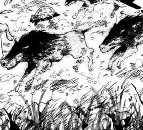 Winter animals1
