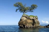 Exile Island