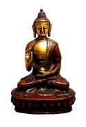 TibetImmunity