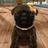 Crazycool120's avatar