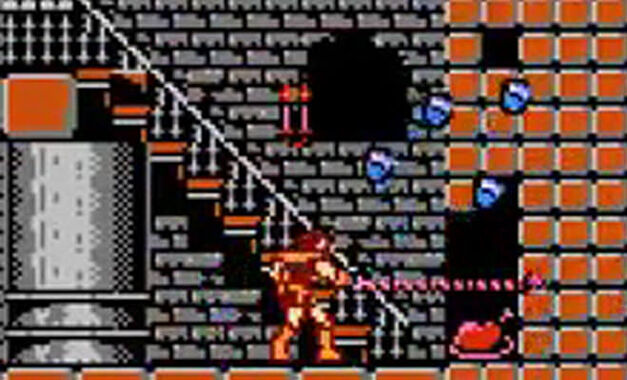 A turkey hidden in a Castlevania wall