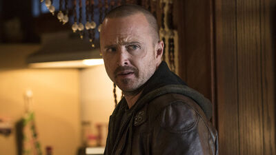 'Breaking Bad' Fans Have a Lot of Interest in 'El Camino' Supporting Characters